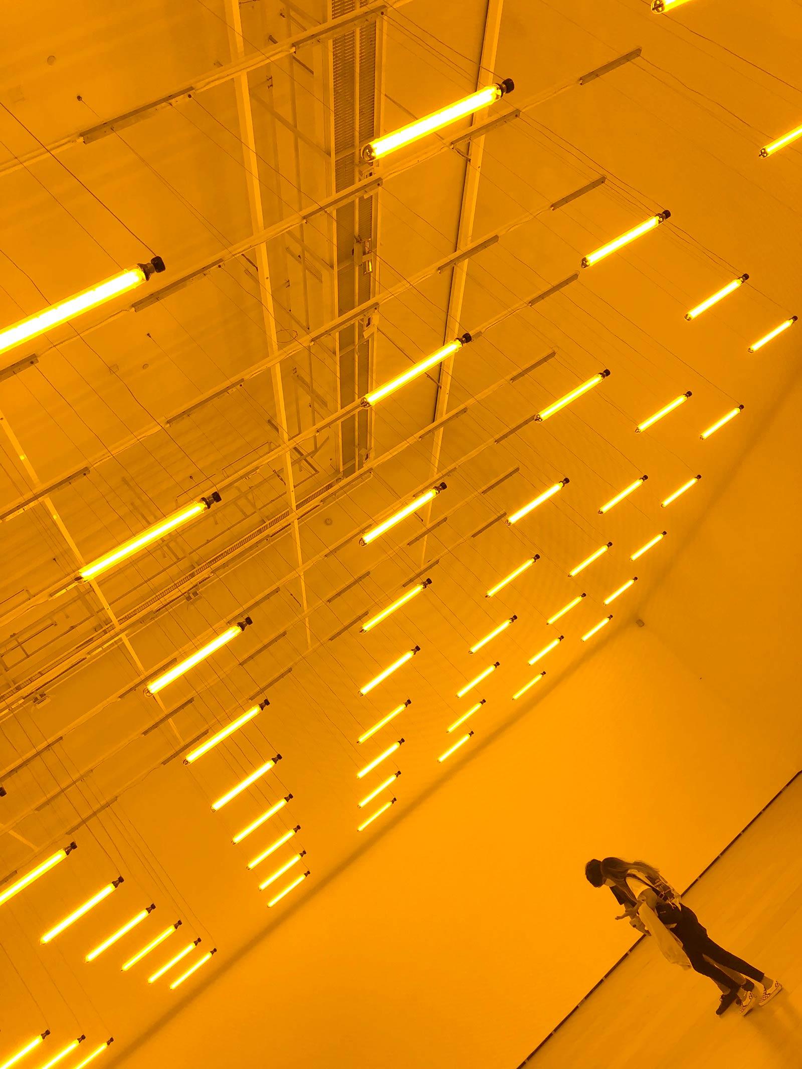 Orange beleuchteter Raum mit Lichtröhren an der Decke