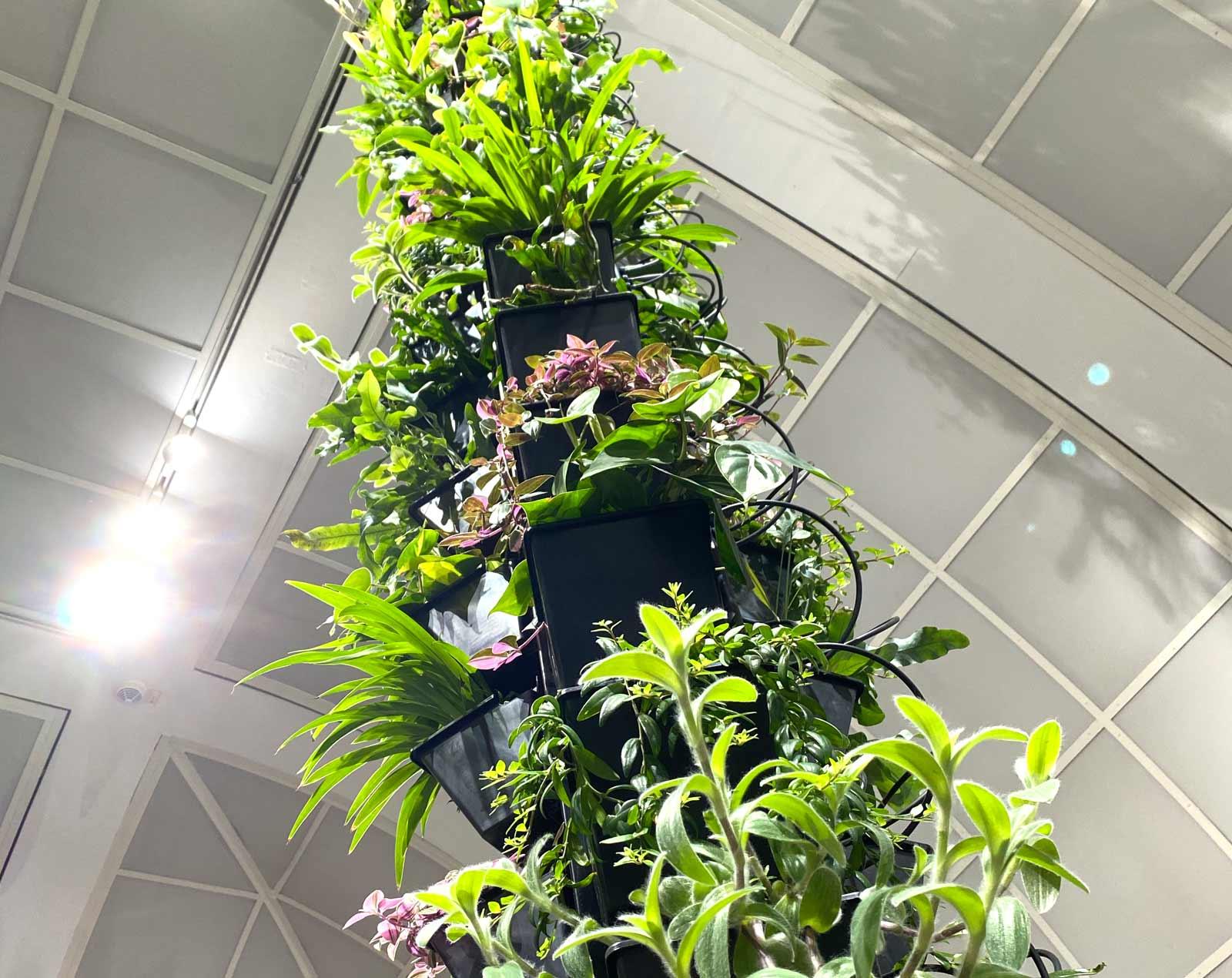 Pflanzsäule im Museum
